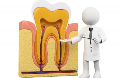 Qué es una enfermedad periodontal y qué factores aumentan el riesgo de padecerla